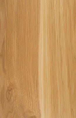 Hickory Clear Natural