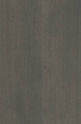 Birch Rustic Gray